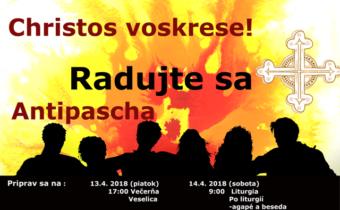 <s>13.-14. apríla 2018 (piatok-sobota) – Antipascha v Košiciach</s>