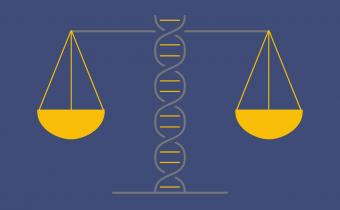 Prosba o vyplnenie dotazníka do 31. júla 2018: Umelé oplodnenie u človeka (oplodnenie v skúmavke) a experiment na ľudských embryách – pohľad kresťanov na Slovensku