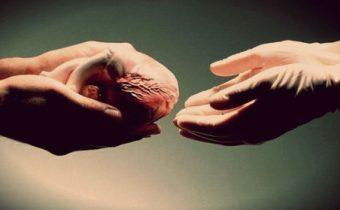 Pýtajte sa … Darovať orgán?